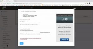 SMS Marketing Reviews protexting-mobilesiteoption-300x158 protexting mobilesiteoption