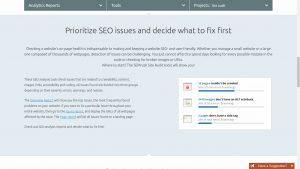 SMS Marketing Reviews siteauditscreenshot-300x169 siteauditscreenshot